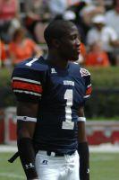 Photo by J. Glover - Atlanta, Georgia, via Wikimedia Commons.